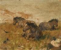 ponies sheltering by nathaniel hughes john baird