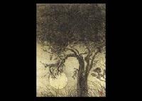 looking at the trees by ikuro yagi