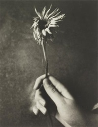 jesse with flower by patti smith