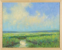 salt marsh by steven allrich