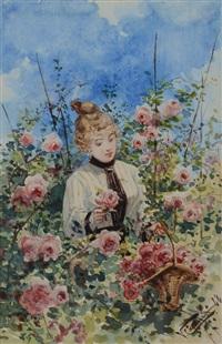 la raccolta delle rose by vittorio cajani