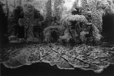 kudzu by jerry uelsmann