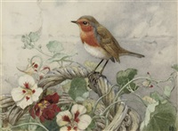 a robin perched on a basket of primroses by winifred marie louise austen