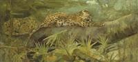 leopards at rest by cuthbert edmund swan