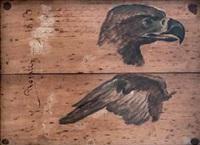 cabeza y ala de águila by eduardo rosales martínez