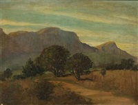 road leading towards table mountain and devil's peak by nita spilhaus