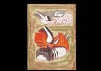mandarin duck by kenji yoshioka