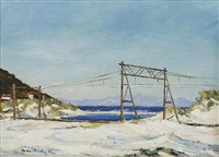 a view of the railway line between clovelly and fish hoek by george william pilkington