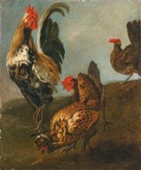 landschaft mit einem hahn und drei hühnern by gysbert gillisz de hondecoeter