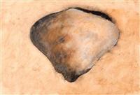 antique shell by tero laaksonen