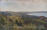 coastal landscape by manuel abelenda