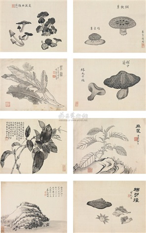 flowers album w8 works by cai shou