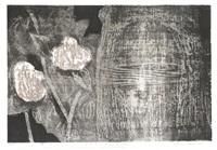 camellia (a) by kaoru kawano