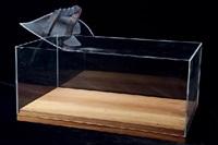 a l'escultura by jordi alcaraz