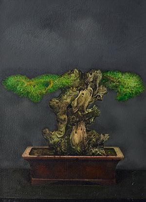 自然的界限 盆景13 by zhang fazhi