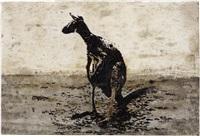 canguro by pino pascali