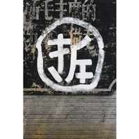 one hundred signs of the demolition by wang jinsong