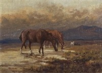 horses by allerley glossop