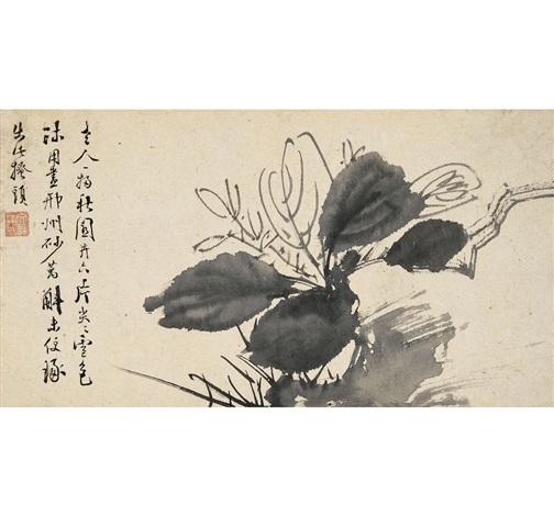 玉簪花 (flower) by xu wei