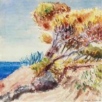 ogliastro marina by paul camenisch