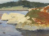 crystal cove, point lobos by brian blood