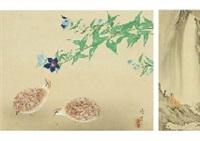 coturnix quail by yamaguchi reiki