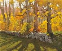 fall shadows by steven allrich