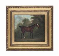 a bay horse in a wooded landscape by john nost sartorius