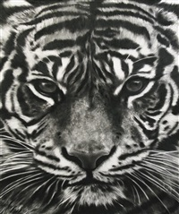 study of tiger head 16 by robert longo