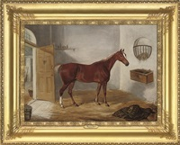 a chestnut hunter in a stable by william webb