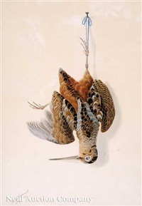 nature morte: woodcock by george luis viavant