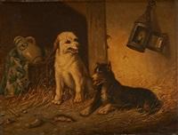 couple de chiens by vincent de vos