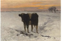 calf in the snow by pieter de regt