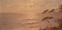 mediterrane küste im abendlicht by jules andré