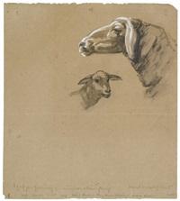 schafzeichnung i. verso: schaf und großes schema eines kuhkopfes by franz marc