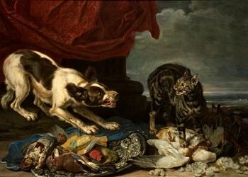 bodegón con perro gato y presas by jan fyt
