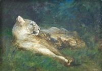 puma with cubs by cuthbert edmund swan