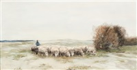 shepherd with his flock by willem steelink