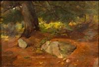 ...maine woods by douglas volk