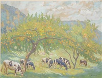 cows grazing in orchard by daniel kotz