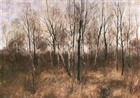 herbstlicher birkenwald by arthur langhammer