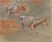 zwei kühe by franz marc