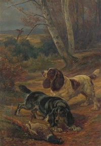 spaniels catching a pheasant by charles h.d. boland de spa