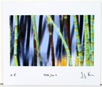 vorzugsausgabe des ausstellungskatalogs jörg sasse (exhibition catalog w/1 work & text) by jörg sasse