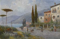 am gardasee by alwin arnegger
