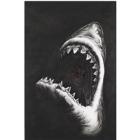 shark 7 (study) by robert longo