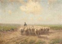 retour du troupeau de moutons by fedor van kregten