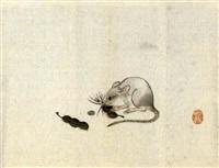ratte mit hülsenfrüchten by gyokusen mochizuki