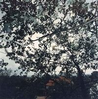 n.77 by jean-luc mylayne