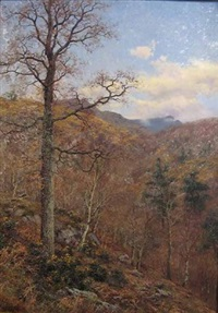 woodland view by walter boodle